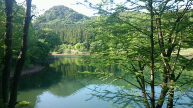 https://www.hiyama-dc.com/blog/wp-content/uploads/items/DSC_0073.JPG